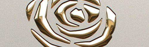 SIBU Design punch-line_3d_roses_champagne_pf_met_gold_1