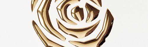 SIBU Design punch-line_3d_roses_pearl_white_gold_1