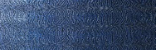 ll_leguan_blue