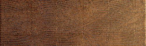 ll_leguan_copper_1
